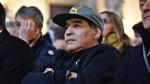 """Maradona afirmó que Argentina """"con Messi o sin él"""" se pude quedar sin Mundial - Noticias de diego maradona"""