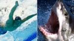 Michael Phelps va por otro récord: ganarle a un tiburón blanco - Noticias de discovery channel
